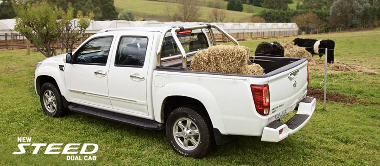 Hunter-Haval-Maitland-Greatwall-Steed-Dual-Cab-Farm